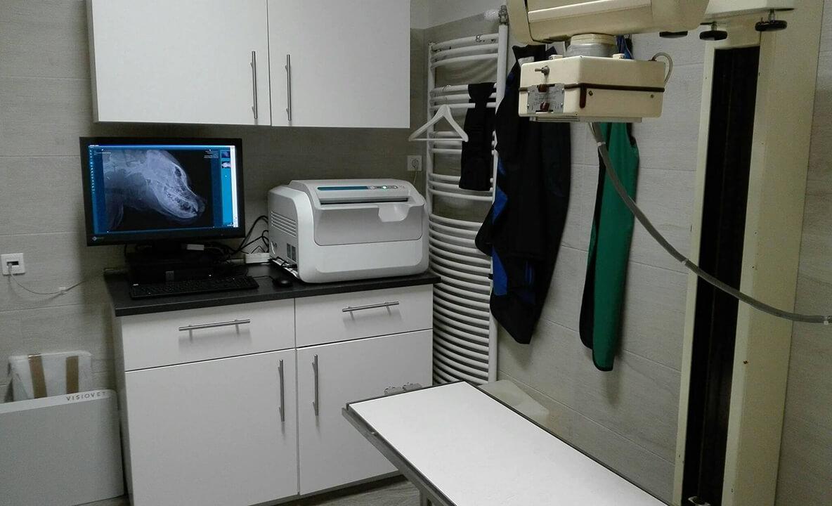 Röntgen vizsgálat - Mátyás Állatorvos Központ